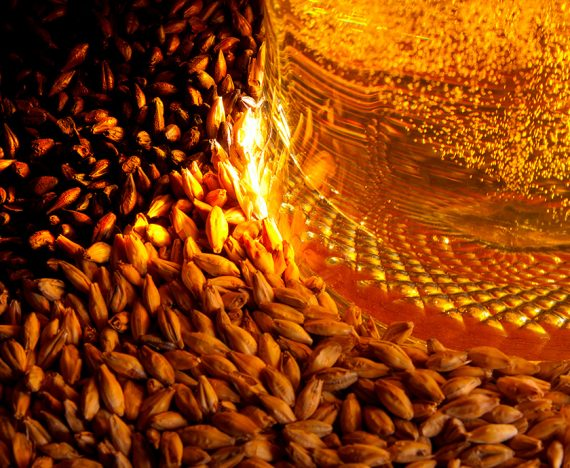 Beer malt: types, characteristics and uses in crafting beer